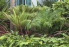 Abbotsbury Tropical landscaping 2