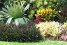 Abbotsbury Tropical landscaping 9